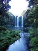 Arrived at Whangarei Waterfalls
