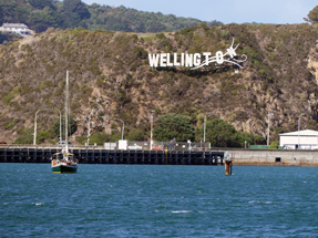 Wellington blown away