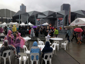 Rainy Homegrown Festival