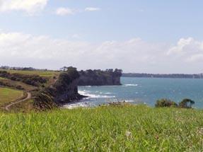 Meadows, Sea, cliff