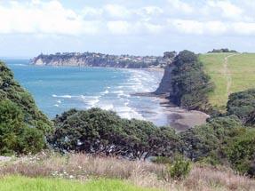 Coastal walk Long Bay
