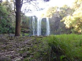 View Whangarei Falls