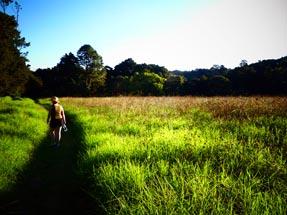 Bianca green meadow