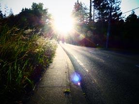 sunset way back