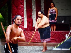 Haka performance Waitangi