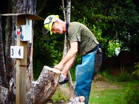Simon Chainsaw tree