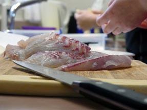 ready cut of filets