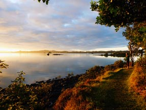 Sunrise on Aroha Island