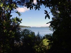 View sea Aroha