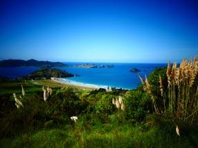 View Matauri Bay