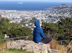 Mt Victoria in Wellington