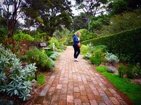 Bianca herbal garden