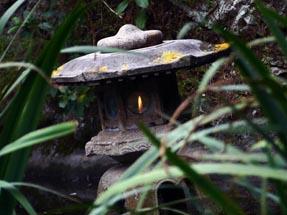 Peace flame in Botanical garden
