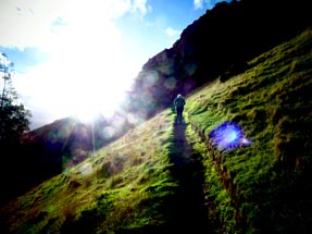 Sunshine on our walk