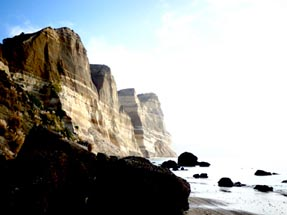 View on the coast at Cape Kidnappers
