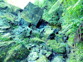 Walking path rocks