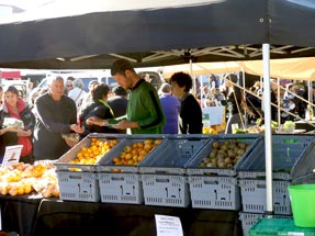 farmers market Gisborne