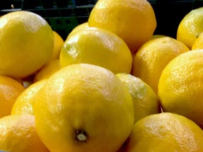 Citrus fruits in boxes