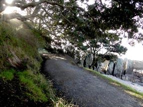 Way up the Mount maunganui