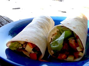 Wraps on plate
