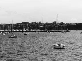 sailing boats harbour