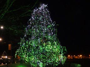 Bicycle Tree Rotorua