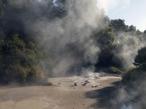 Mudpool Rotorua
