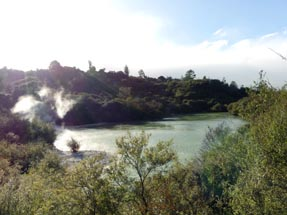 Lake Sun Whakarewarewa