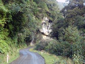 View jungle street