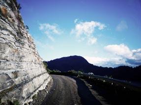 Te Urewera Jungle Route