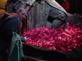 Red poppys Soldier