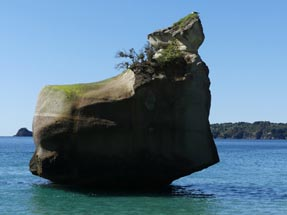 Stein Meer Cathedral Cove