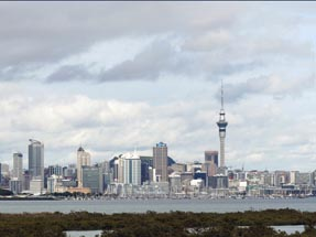 City view Auckland