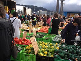 Market Wellington fruit boxes