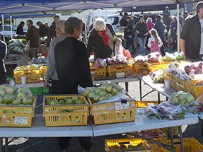 fruit boxes Gisborne
