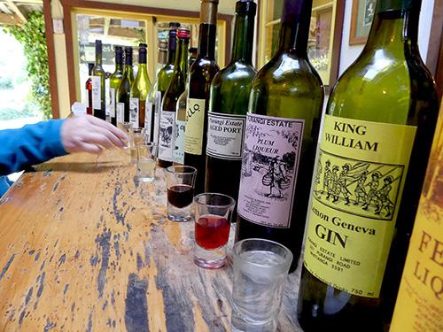 Purangi Winery liquor tasting